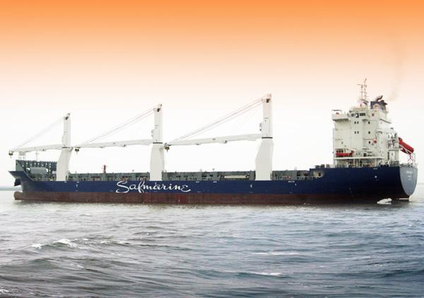 18000吨多用途船